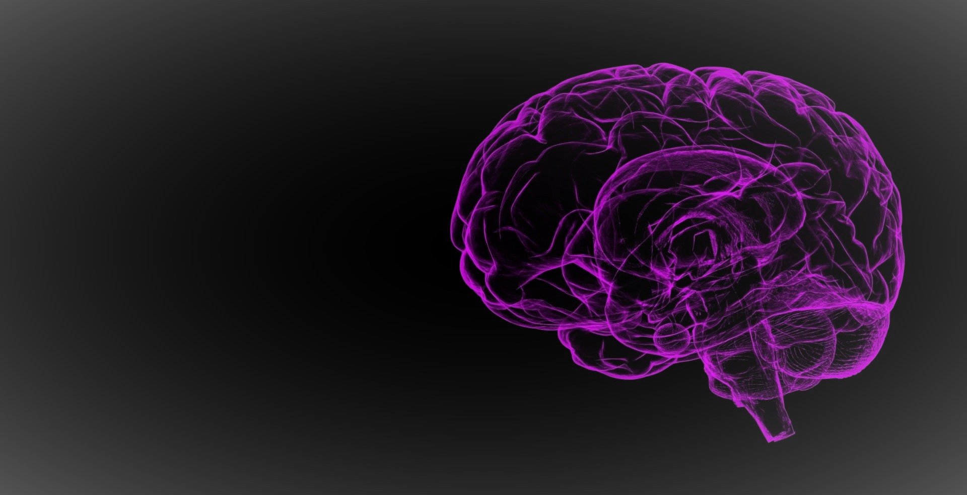 Featured insights on human intelligence